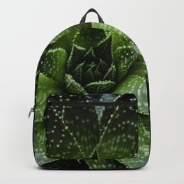 Succulent plant Backpack