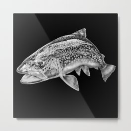 Brown Trout Metal Print