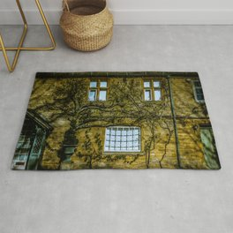 Windows on a Cotswold Square House with Vine and Shadow England Rug
