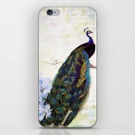 Blue peacock and hydrangea iPhone Skin