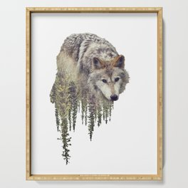 Double exposure of wolf and pine forest on white background Serving Tray