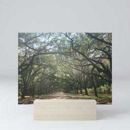 Plantation Road Mini Art Print