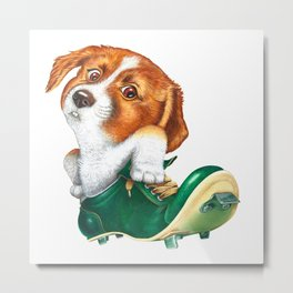 A little dog in a spike Metal Print