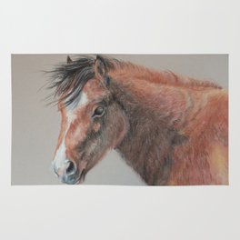 PONY Brown Horse portrait Pastel drawing Cute Foal Colt Baby Horse Rug