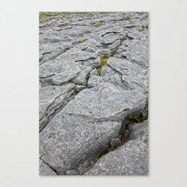 Poulnabrone Stone Texture Canvas Print