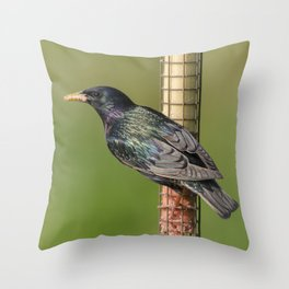 Starling on feeder Throw Pillow