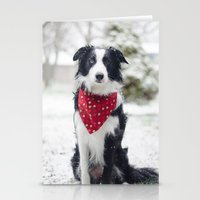 border collie Stationery Cards featuring Snow Border Collie by MelissaLaDouxPhoto