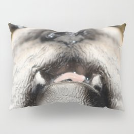 love, print, bulldog, canine, collection, icons, portrait, breed, pedigree, face, puppy, cartoon, ba Pillow Sham