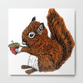 Squirrel in Colour Metal Print