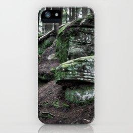 Algonquin Park, Ontario iPhone Case