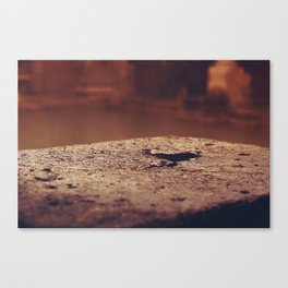 standing water Canvas Print