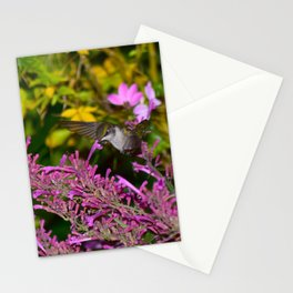 Hovering hummingbird feeding from agastache 58 Stationery Cards