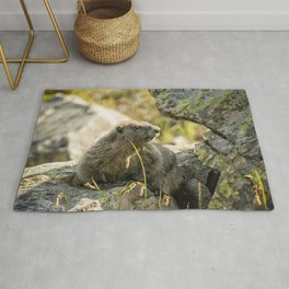 Marmot on Naches Peak Rug