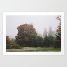 Northwestern Fog Art Print