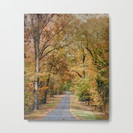 Autumn Passage 2 - Fall Landscape Scene Metal Print