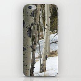 Aspen 1# iPhone Skin