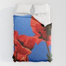 mohn 4 Comforters