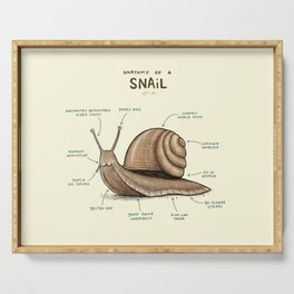 Anatomy of a Snail Serving Tray