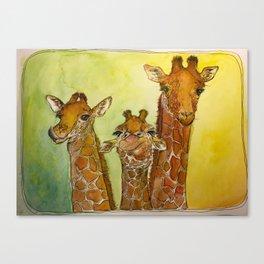Giraffes Canvas Print