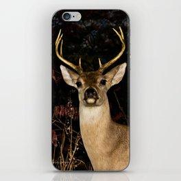 Whitetail Deer iPhone Skin