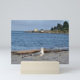 Salt Life • Willard Beach & Fisherman's Point (South Portland) Mini Art Print