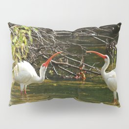 Ibis Dating Place Pillow Sham