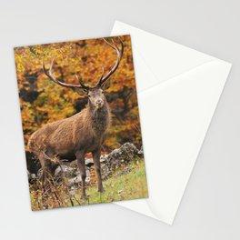 Cervo Maschio Stationery Cards