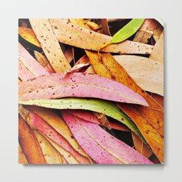 Fallen Eucalyptus Leaves Texture Colorful Metal Print