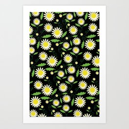 Night Daisy Art Print