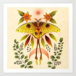 Moth Wings IV Art Print