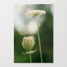 Wildflower 2 Canvas Print