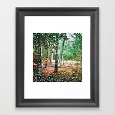 :: Walk in the Woods :: Framed Art Print