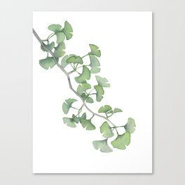 GINKGO, painting by Frank-Joseph Canvas Print