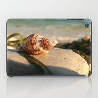 seashell iPad Cases featuring seashell by Vivian Fortunato