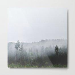 Fogged in Treeline Metal Print