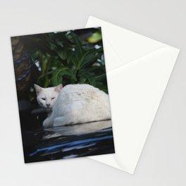 Laze Stationery Cards