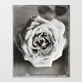 Classic Rose Tintype Canvas Print