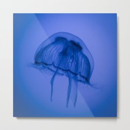 Moon Jelly Metal Print