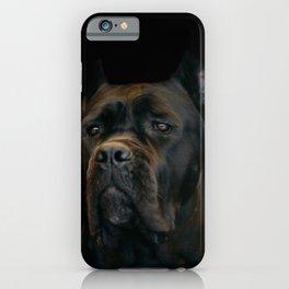 Cane Corso - Italian Mastiff iPhone Case