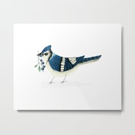 Blue Jay Bird Metal Print