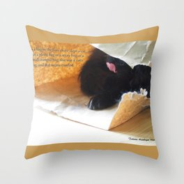 In a bag on the floor there lived a cat, or Black cat in bag Throw Pillow