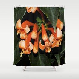Flame Vine Shower Curtain