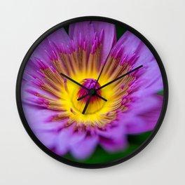 Purple Waterlily Macro Wall Clock