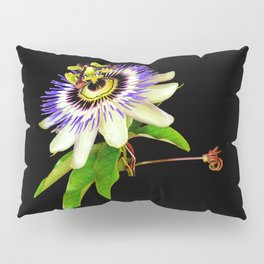 Exotic beauty Pillow Sham