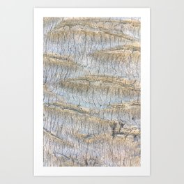 Sliced Bark Art Print