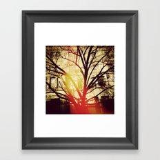 'UPPER WEST TREE' Framed Art Print