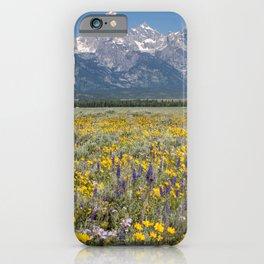 Grand Teton National Park iPhone Case