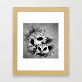 meerkat suricate mongoose wsbw Framed Art Print