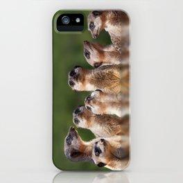 Meerkat Mob iPhone Case