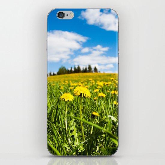 Dandelion field iPhone & iPod Skin